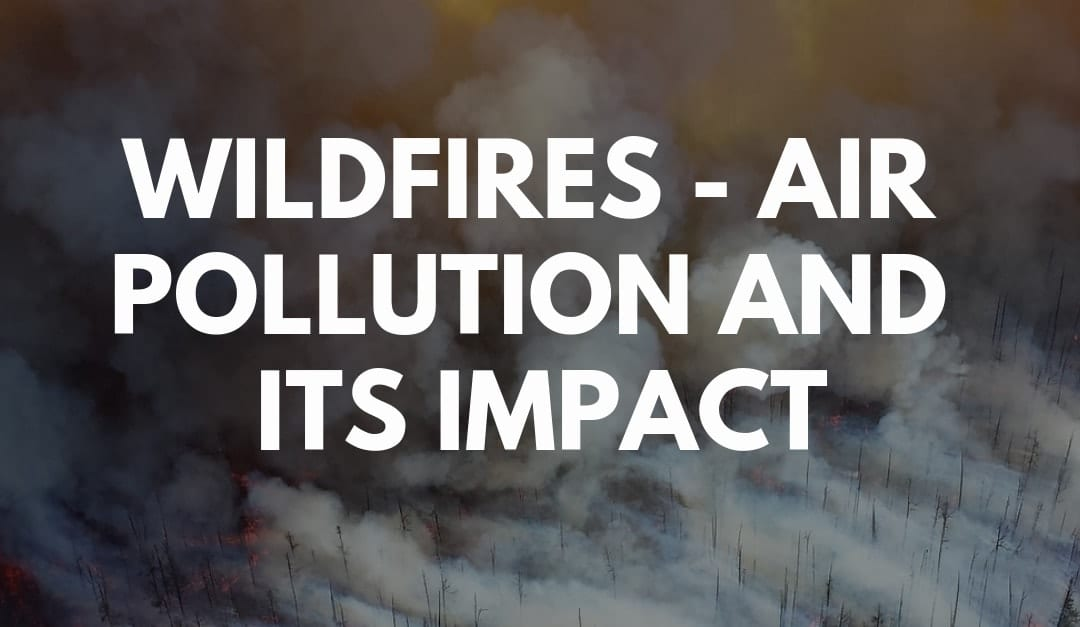 Wildfires – air pollution and its impact (2019)